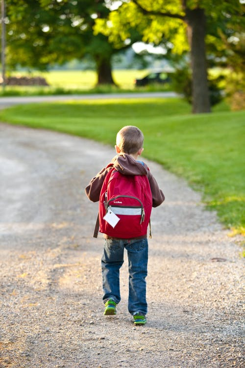 Kids backpacks and how to pick the best one for your little human